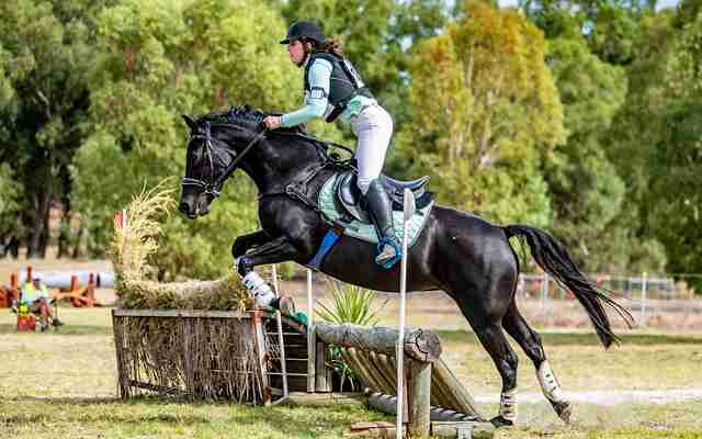 Is your horse fit or conditioned?